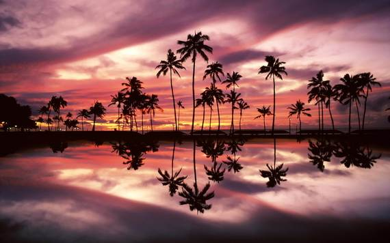 A-Seven-Day-Beach-Vacation-The-Relaxing-Hawaiian-Islands-_10