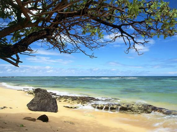 A-Seven-Day-Beach-Vacation-The-Relaxing-Hawaiian-Islands-_29
