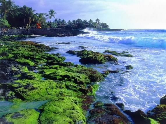 A-Seven-Day-Beach-Vacation-The-Relaxing-Hawaiian-Islands-_31