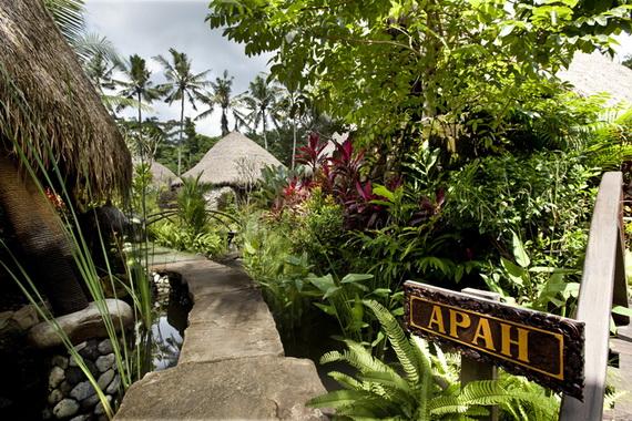 Fivelements Puri Ahimsa A Healing Retreat In Bali Indonesia_10