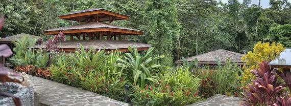 Luxurious Rainforest Experience Nayara Springs, Costa Rica_23