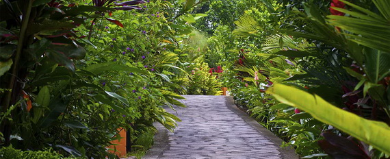Luxurious Rainforest Experience Nayara Springs, Costa Rica_29