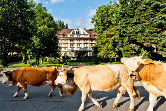 five star hotel in the Center of Gstaad  Le Grand Bellevue_02