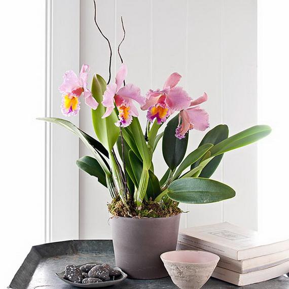 Flower Decoration Ideas For Valentine's Day_40