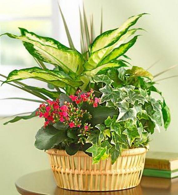 Flower Decoration Ideas For Valentine's Day_57