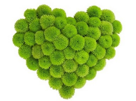 Green Valentine's Day Gift Ideas 2014- Eco-Friendly Presents _19