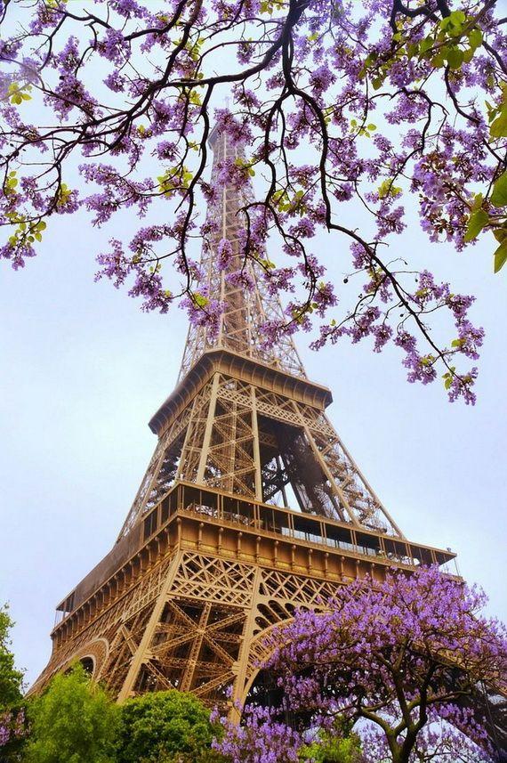 A Family-Friendly City Break  in  Paris Eiffel Tower  _04