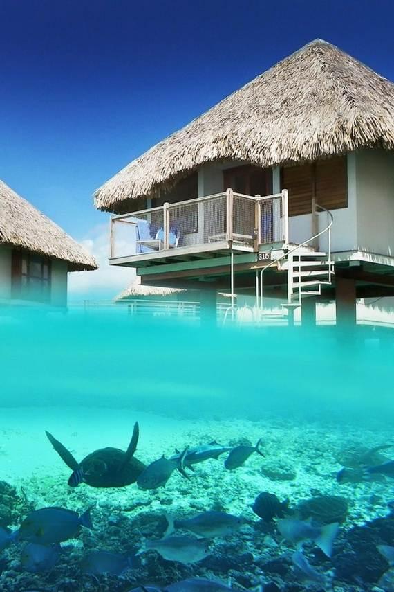Best-Overwater-Bungalows-In-Tahiti-Le-Meridien-Bora-Bora-_67