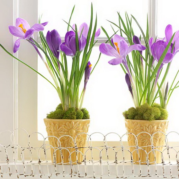 Easter and Spring Door Decoration Ideas_01