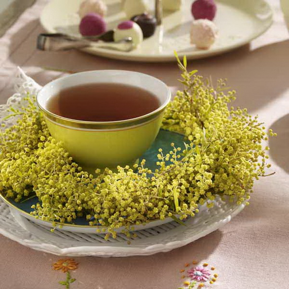 Feenhafte Blumentr?ume: Mimosenkranz