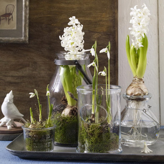 Fresh Spring Decorations Ideas