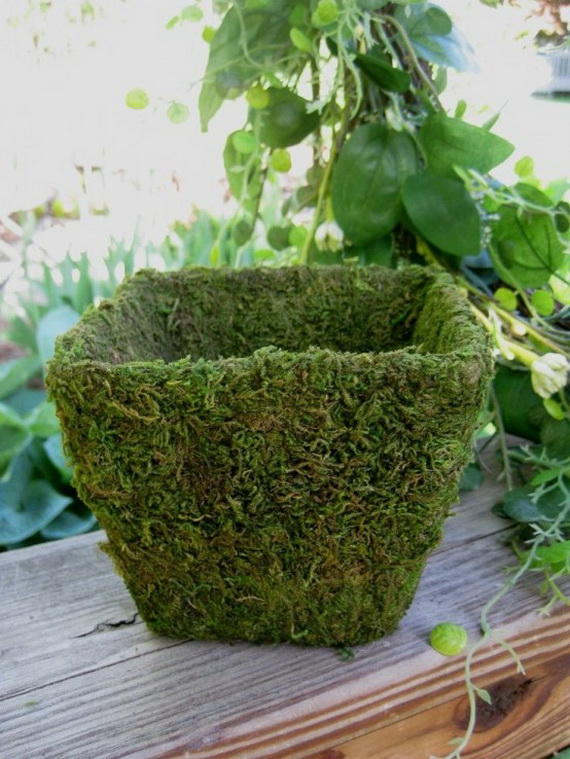 Fresh Spring Decorations Ideas - Decorate And Tinker With Moss_63