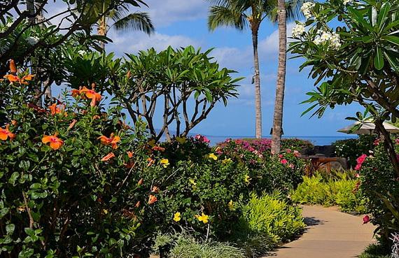 Maui-Best Honeymoon Destination in the U.S (10)