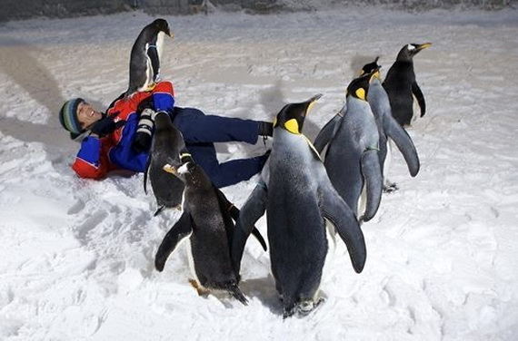 Unbelievable Family Holiday in Dubai (Ski Dubai)_07