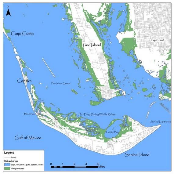 Sanibel-Island-Florida-The-Sea-Shell-Capital_15