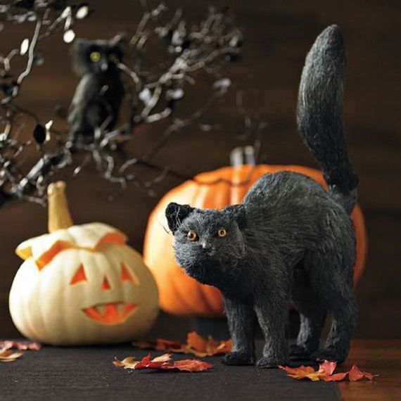 Halloween Accessories and Decorations_55