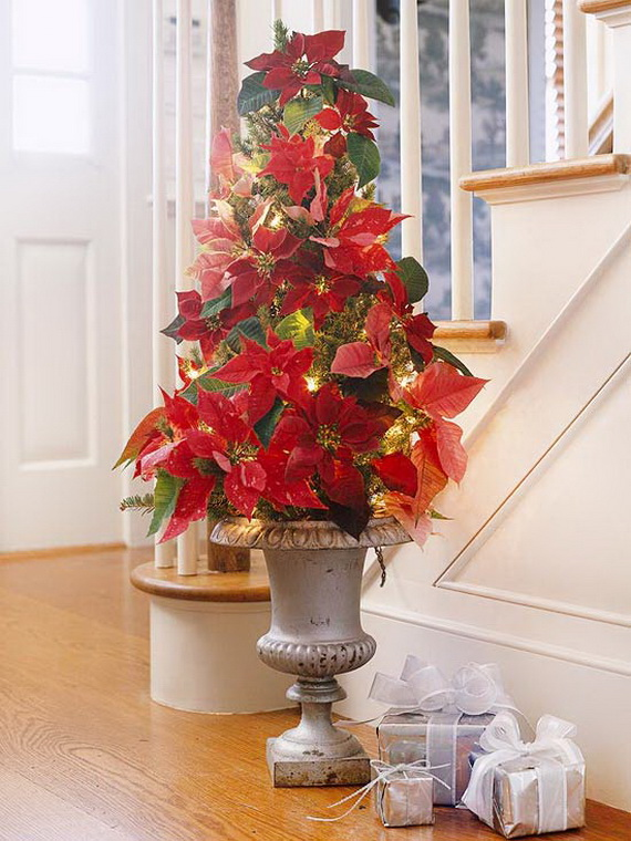 Decorate Christmas with 45 ideas poinsettias the holidays' most loved plant_06