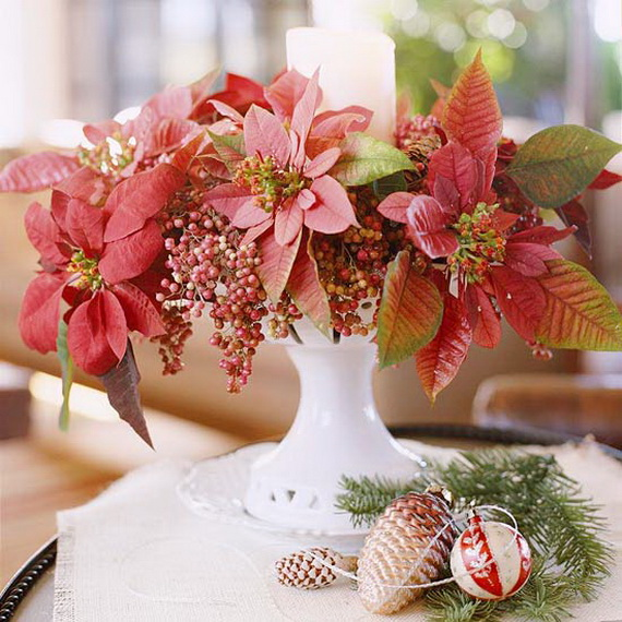 Decorate Christmas with 45 ideas poinsettias the holidays' most loved plant_07