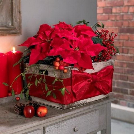 decorate christmas with 45 ideas poinsettias the holidays most loved plant_13 - Poinsettia Christmas Decorations
