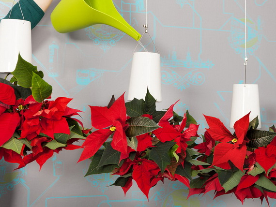 Decorate Christmas with 45 ideas poinsettias the holidays' most loved plant_45