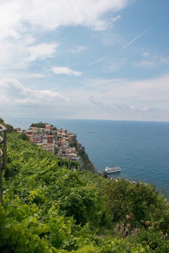The Colorful Cliff-Side Town of Manarola , La Spezia,  Italy (7)