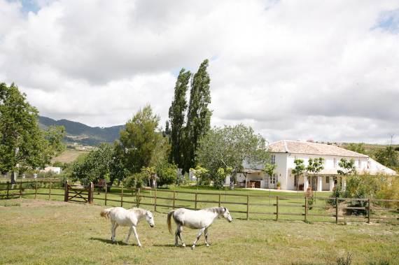a-stunning-spanish-stay-la-huerta-el-noque-andalucia-3