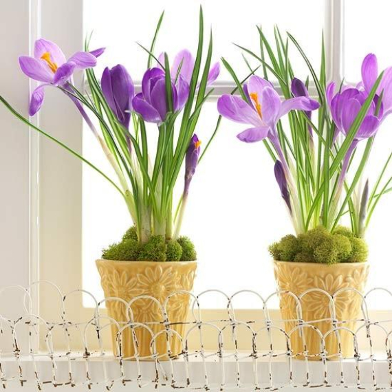 Beautiful Ideas For The Spirit Of Easter And Spring Into Your Home Decor (45)