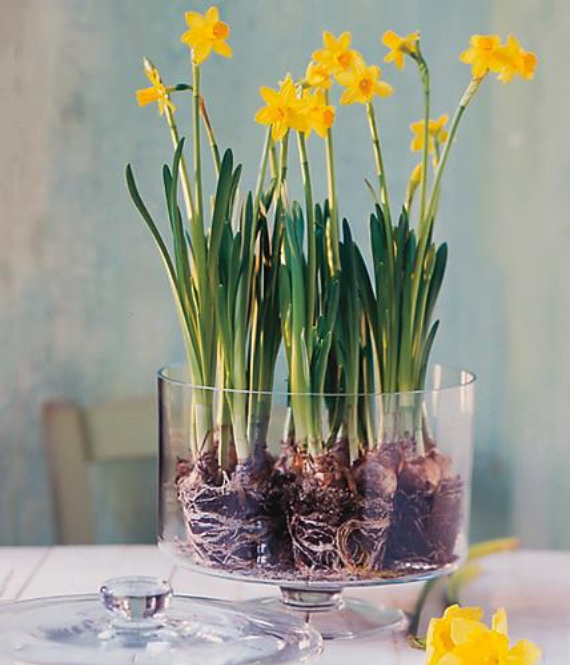Easter decorations and crafts inspiration ideas  (36)