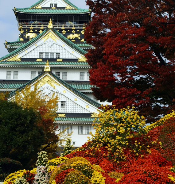 The Harmony and Beauty outside the Osaka Castle Japan (11)