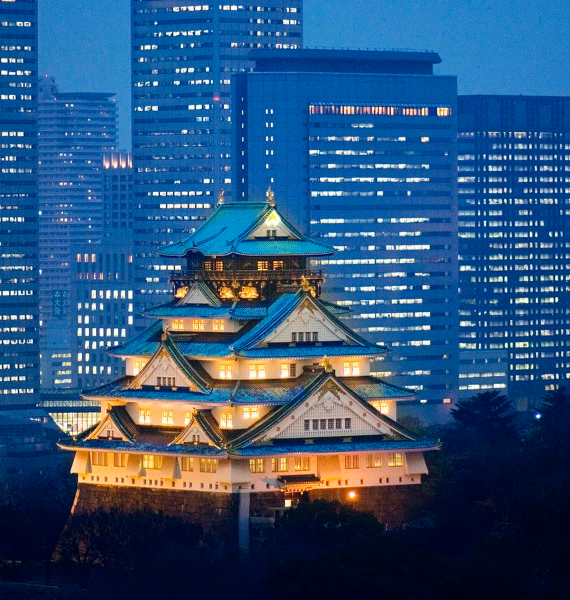 The Harmony and Beauty outside the Osaka Castle Japan (21)