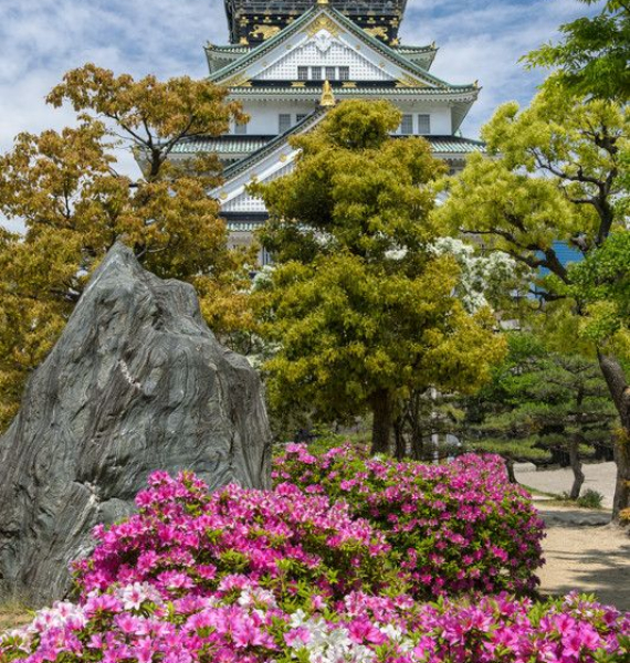 The Harmony and Beauty outside the Osaka Castle Japan (23)