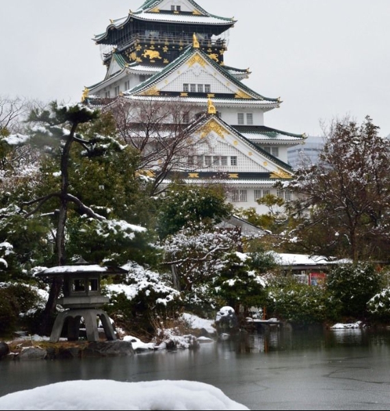 The Harmony and Beauty outside the Osaka Castle Japan (29)