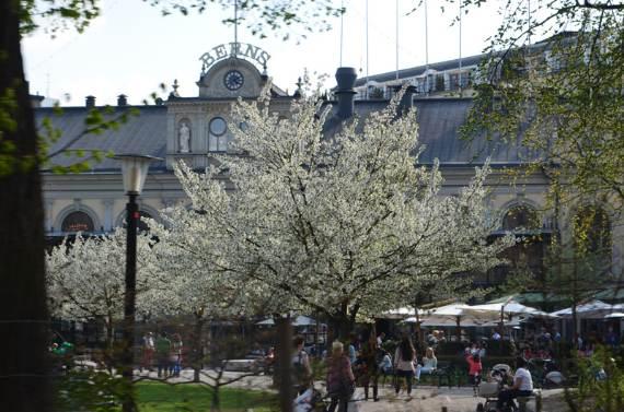 stockholm-a-unique-city-shaped-by-nature-5