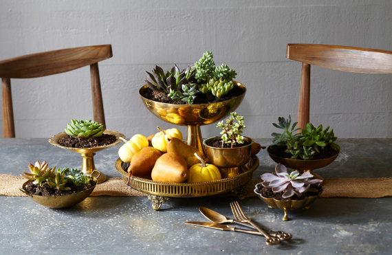Warm and Inviting Thanksgiving Centerpiece Ideas  (15)