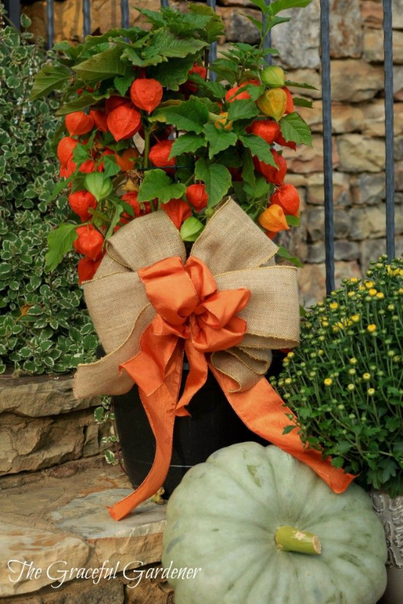 Cool Orange Fall &Thanksgiving Decorating Ideas with Chinese Lanterns  (11)