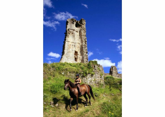 Chateau-De-Baloigne-Rhone-Alpes- (11)