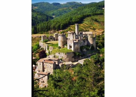 Chateau-De-Baloigne-Rhone-Alpes- (14)