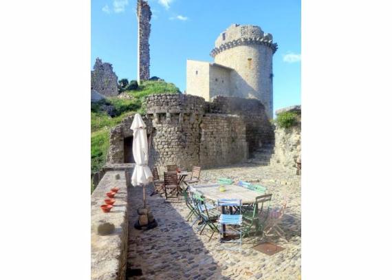 Chateau-De-Baloigne-Rhone-Alpes- (16)