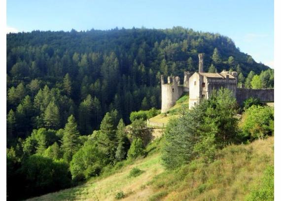 Chateau-De-Baloigne-Rhone-Alpes- (25)