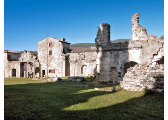 Chateau-De-Baloigne-Rhone-Alpes- (29)