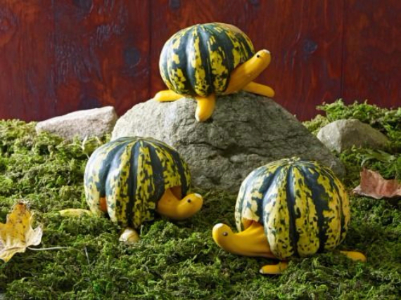 Ways to Decorate for Fall, Halloween and Thanksgiving With Pumpkins (14)