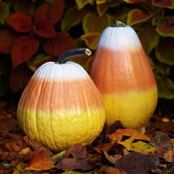 Ways to Decorate for Fall, Halloween and Thanksgiving With Pumpkins (21)