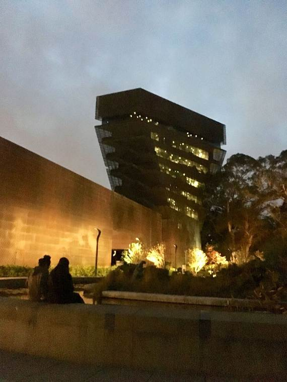 de_young_museum_at_night-11