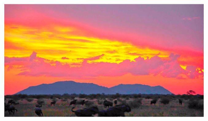 Molori-Safari-Lodge-South-Africa (1)