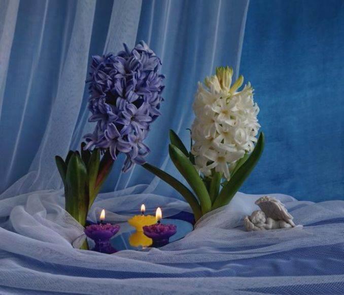 elegant-flower-arrangements-table-centerpiece-ideas-1