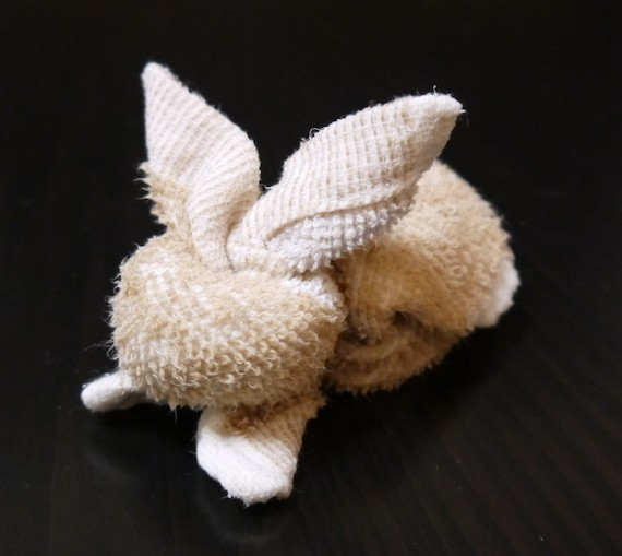 adorable towel bunny