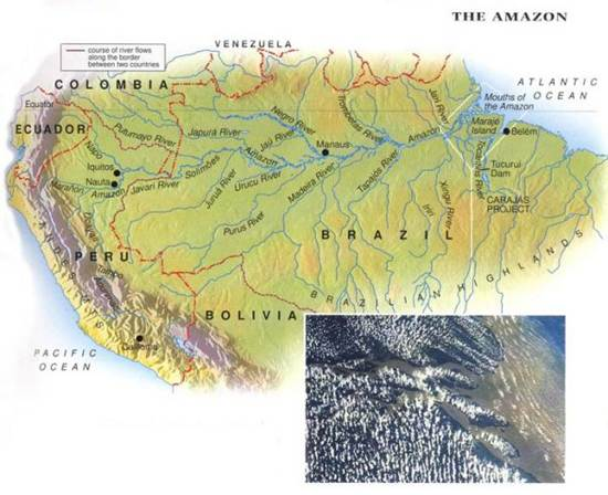 amazon-the-worlds-largest-rainforests-3