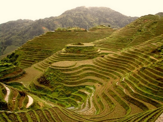 Banaue Rice Terraces, in Ifugao Stairway to Heaven Philippines _13