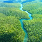 Holiday to The Amazon The World's Largest Rainforests
