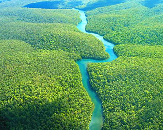 brazil-amazon